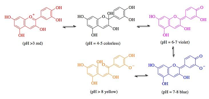 acetic acid and sodium hydroxide