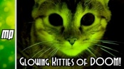 Genetic Engineering and Glowing Kitties of DOOM!