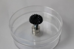 Ferrofluid Home Experiment Kit 1