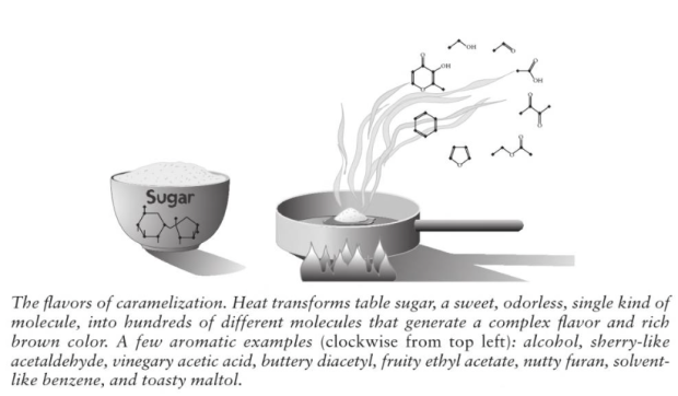 Image from On Food and Cooking: The Science and Lore of the Kitchen