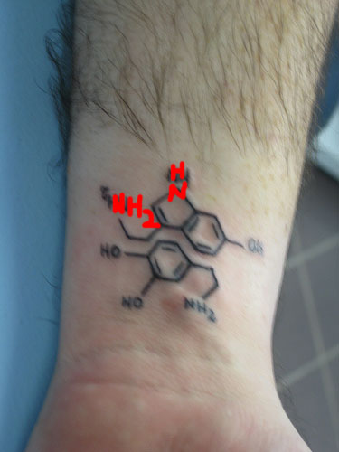 11 chemistry tattoo fails myles power for Tattoos that say something different upside down