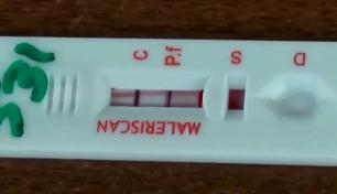 mms-test-1