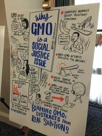 QED 2017 GMO 2