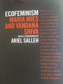 EcoFeminism1