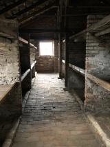 auschwitz birkenau childrens barracks
