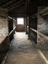 auschwitz birkenau childrens barracks