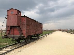 auschwitz birkenau train cart