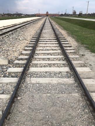 auschwitz birkenau train