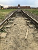 Train into auschwitz birkenau 2