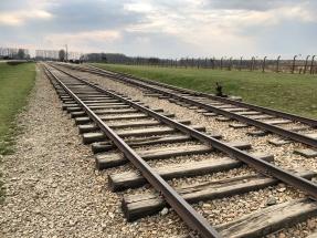 Train into auschwitz birkenau