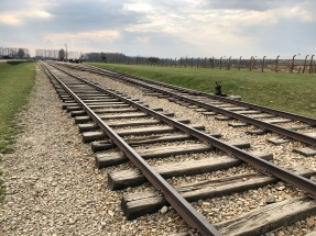 Train into auschwitz birkenau